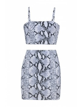 Snakeskin Print Crop Top Bodycon Skirt Two-Piece Set Gray
